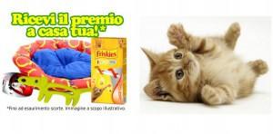Cuccia o gioco per animali omaggio