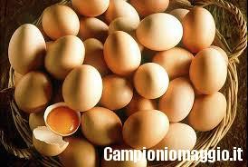 I rimedi naturali dell'uovo