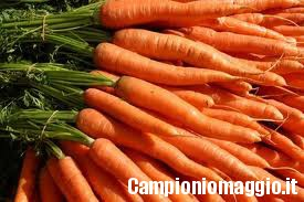 I rimedi naturali della carota