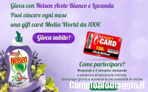 Concorso Nelsen: vinci una gift card Media World da 100€