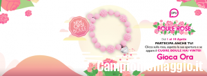 Concorso OPSOBJECTS Boule Rose