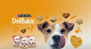 Vinci alimenti per cani Delibakie